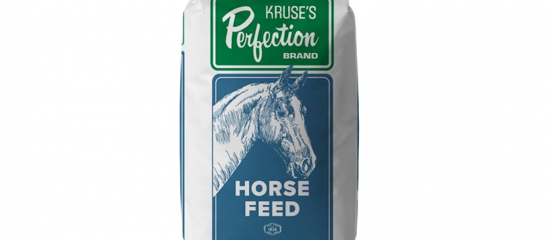 09.kruseperfection_horse